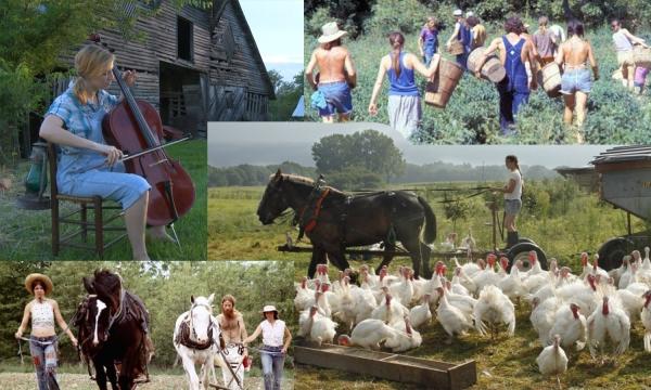 Chronology 3- Farm